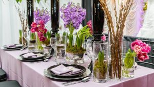 Potted Plants for Table Centerpiece